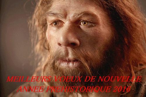 MeilleursVoeux2016.jpg