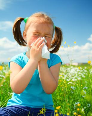 allergies-fotolia_32292464-_fillette.jpg