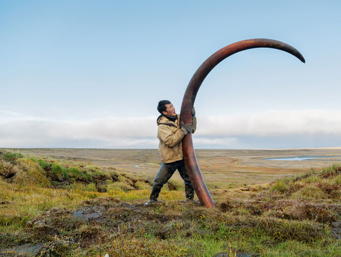01-pristine-mammoth-tusk-670.jpg