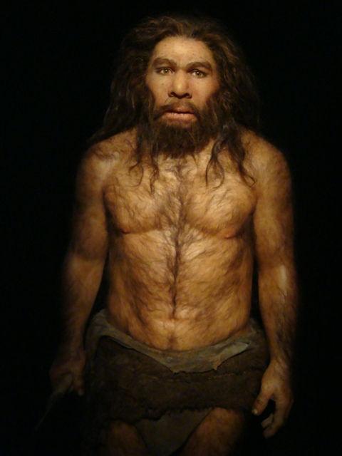 738_neandertal.jpg