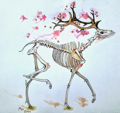 Squelettecerf.jpg