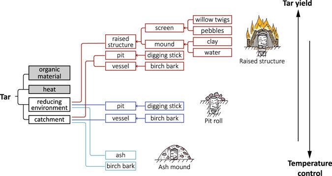 birchbarkdistillationarticlenature.jpg
