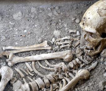 Le musée municipal de l'homme de Néandertal.