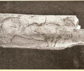 Réflexions sur l'arc préhistorique par Didier Raymond